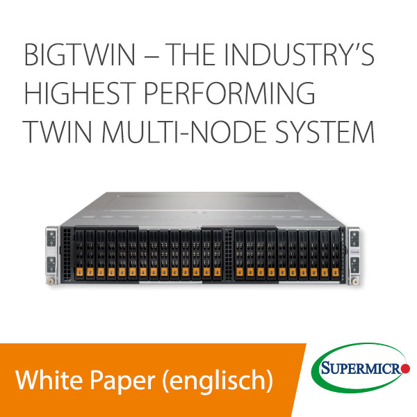 White Paper BigTwin